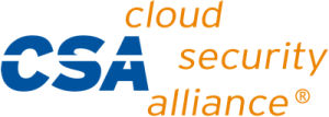 cloud security alliance 300x107 - Datacate Completes SOC 2 Type II Audit, Includes HIPAA and Cloud Security